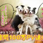 武将ジャパン祝100万PV画像640
