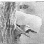捕鯨船エセックス号
